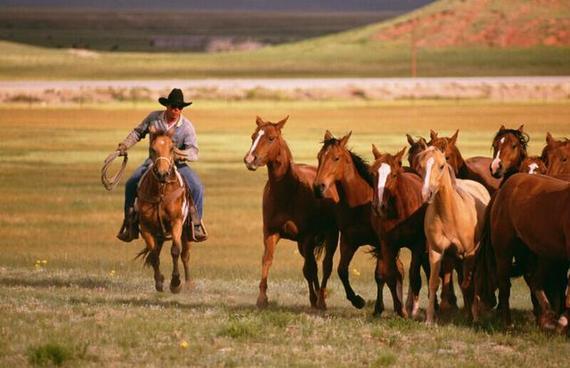 电影中的西部牛仔